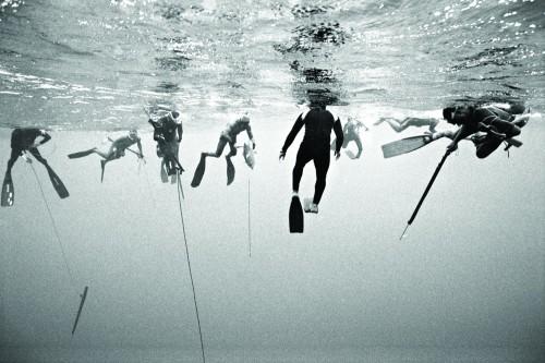 Kanoa Zimmerman: Free dive - Series